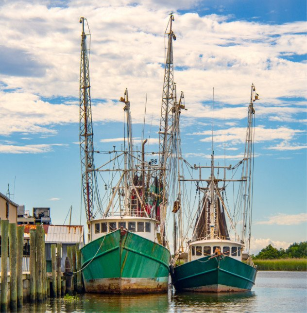 Apalachicola Bay Shrimp Boats Docked